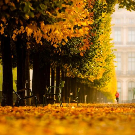 Tuileries_01